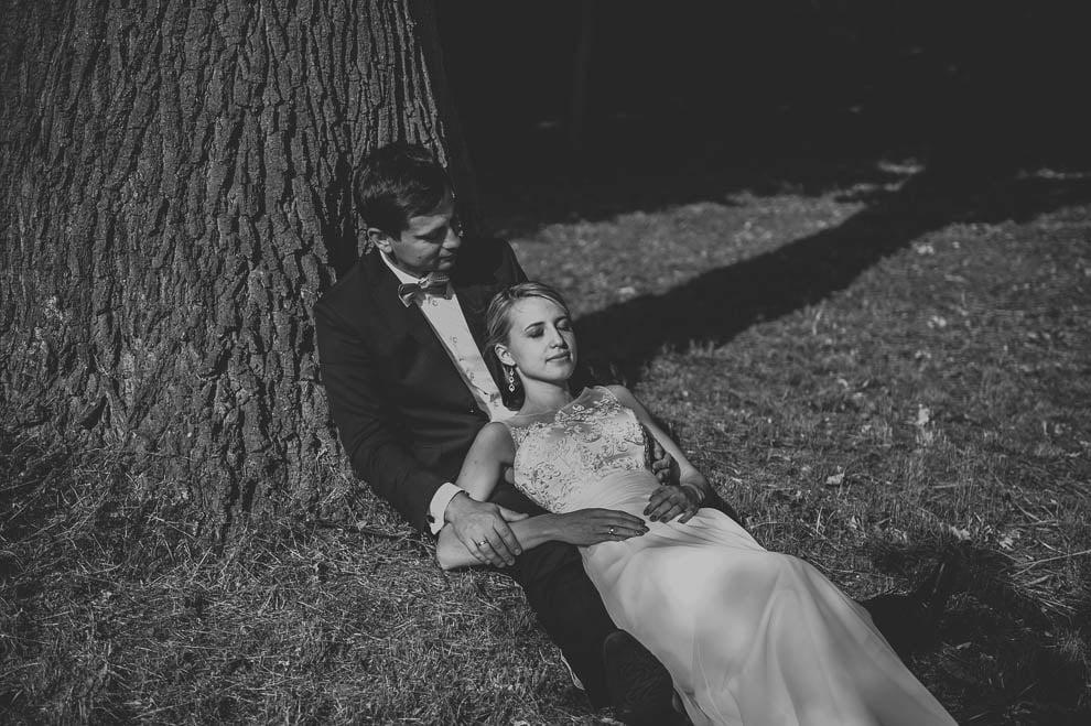 plener las 11 - Plener ślubny w lesie