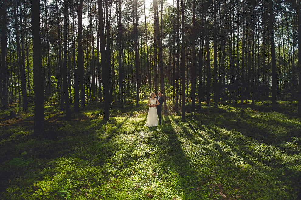 plener las 12 - Plener ślubny w lesie